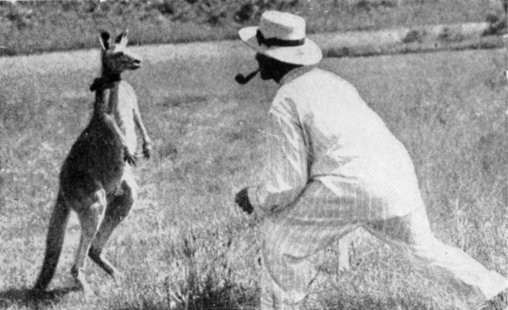 Wilderness guide in the outdoors approaches wildlife, a kangaroo, as a way to make money doing something he enjoys  https://upload.wikimedia.org/wikipedia/commons/5/5f/Babyhood_of_Wild_Beasts_-_The_Pugilist_of_the_Animal_Kingdom.png